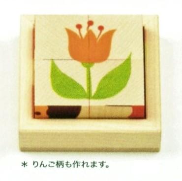 写真:キューブパズル りんご